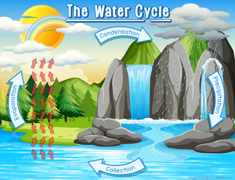 Water Cycle diagram 1000x768